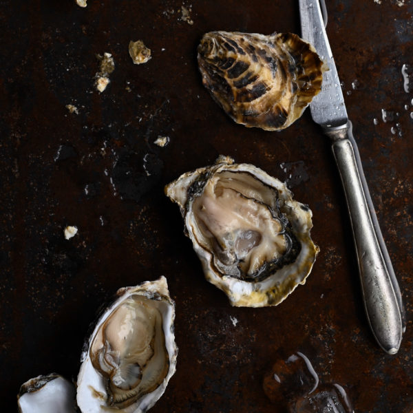 THE JOYS OF SALDANHA BAY OYSTERS