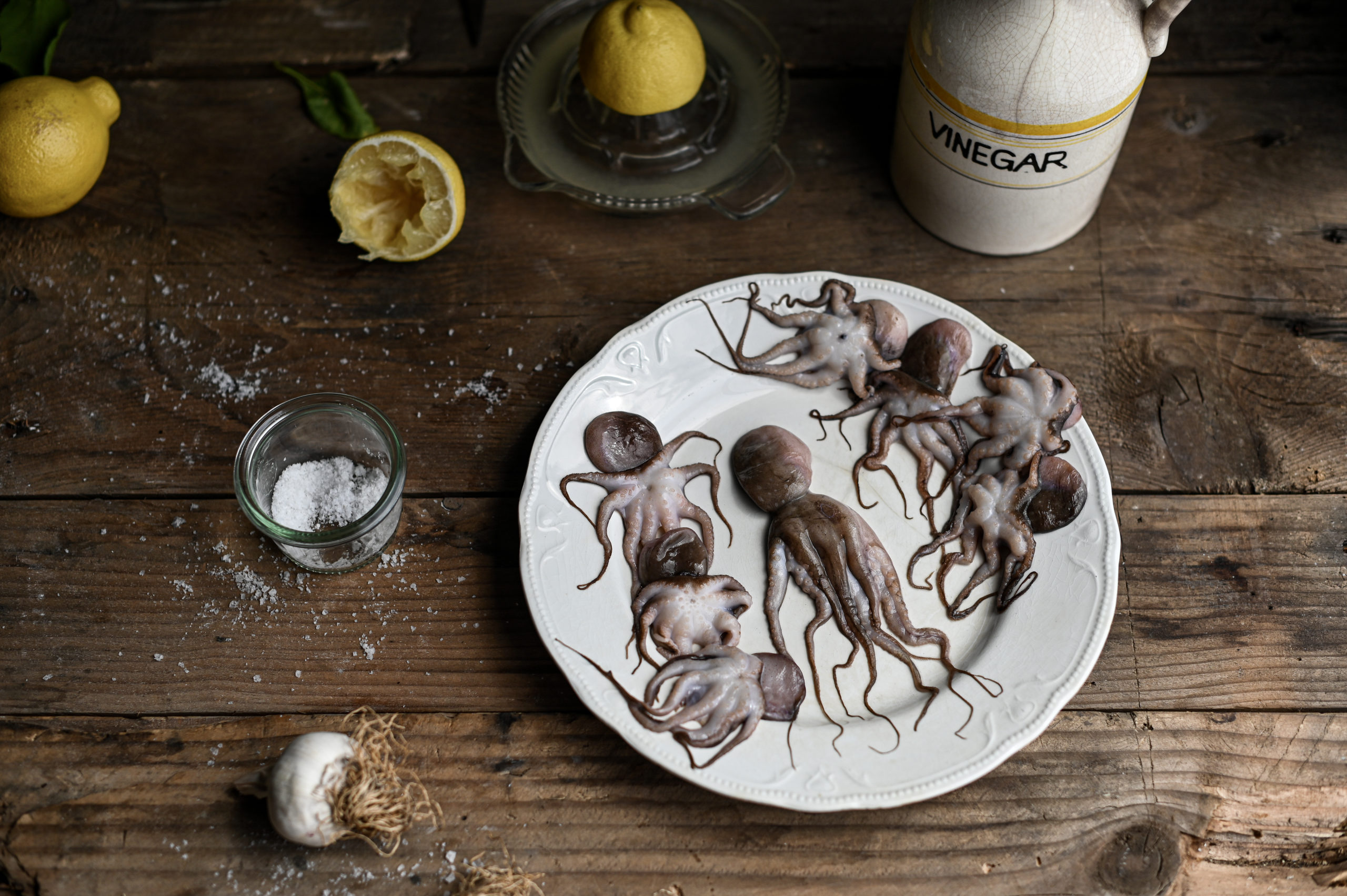 GRILLED BABY OCTOPUS
